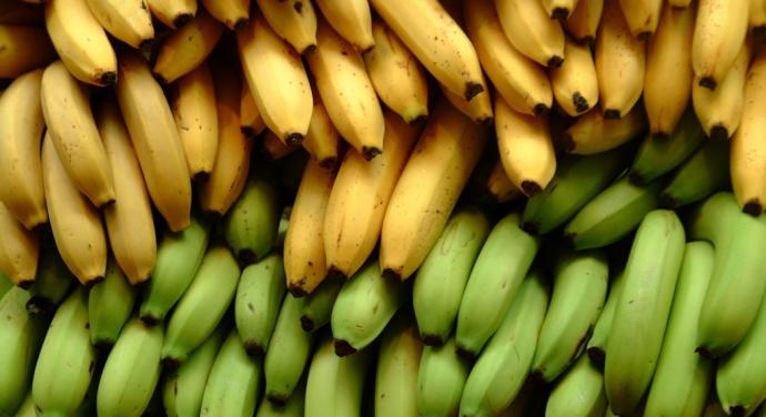 czy warto jeść banany