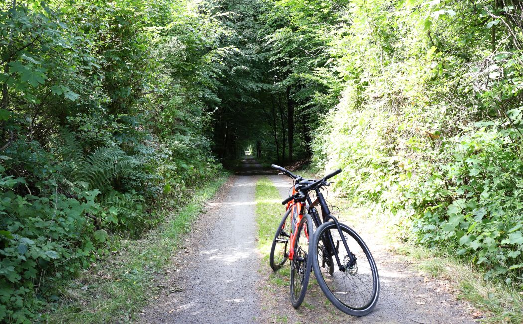Drogi rowerowe na Bornholmie