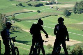 Gdzie na rower