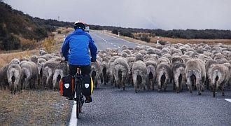 Jak wybrać rower wyprawowy