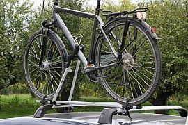 Taurus Bike Up Test