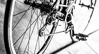 Piszczenie cykanie rower