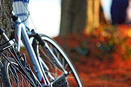 Płatne dojazdy rowerem