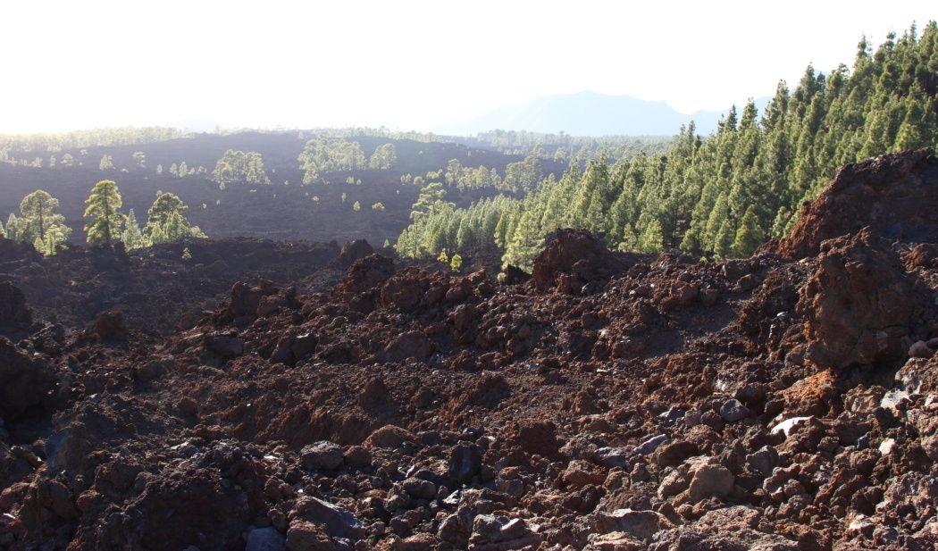 wulkan-las