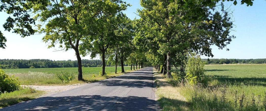 Długa trasa rowerem jednego dnia