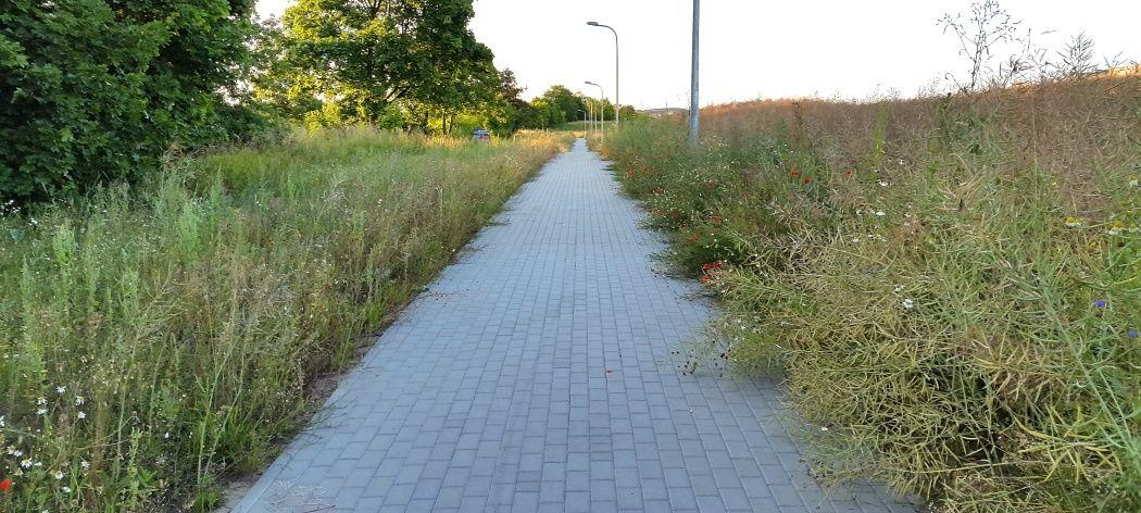 Droga rowerowa do ominięcia podjazdu