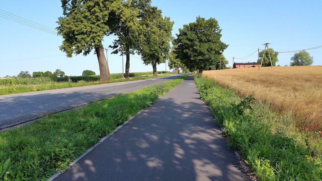 Droga rowerowa Chełmża