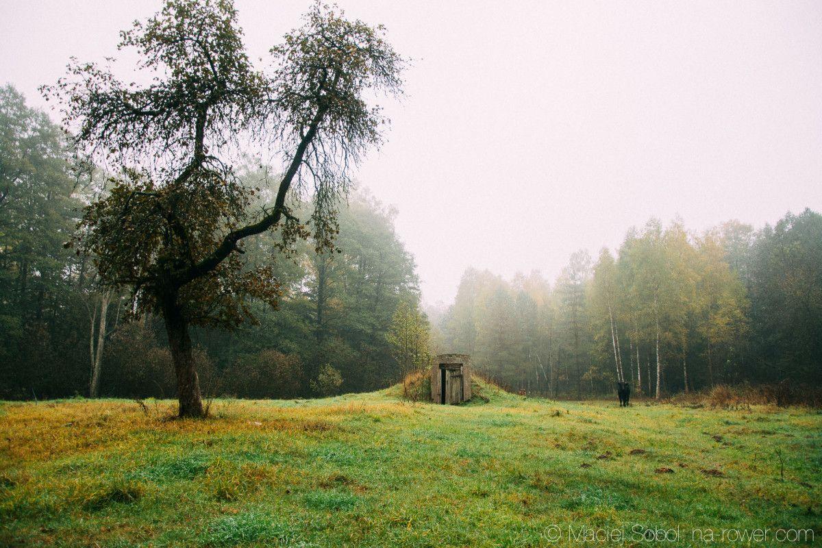 Jesień kolorowa, ludzie piękni i natura życzliwa czyli województwo Podlaskie greenvelo green velo