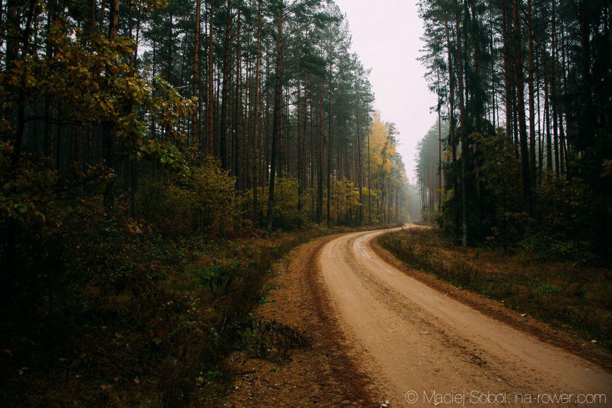 Jesień kolorowa, ludzie piękni i natura życzliwa czyli województwo Podlaskie greenvelo green velo Wiem co myślą rowerzyści