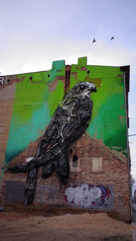 Jerzyk ptak Łódź Kilińskiego