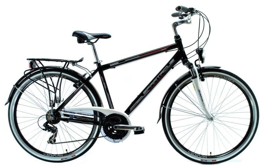 Spartacus Premier rower