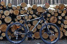 Indiana X-Pulser rower górski