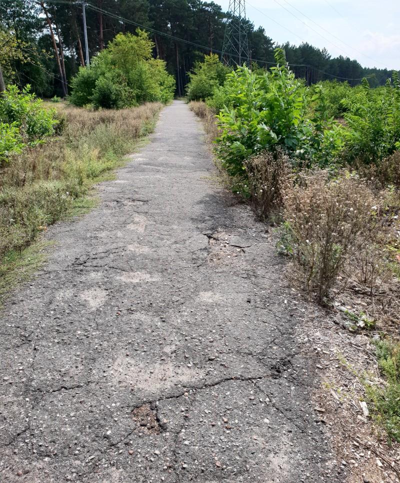 Droga rowerowa Włocławek