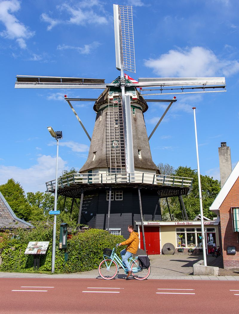 Wiatrak Holandia
