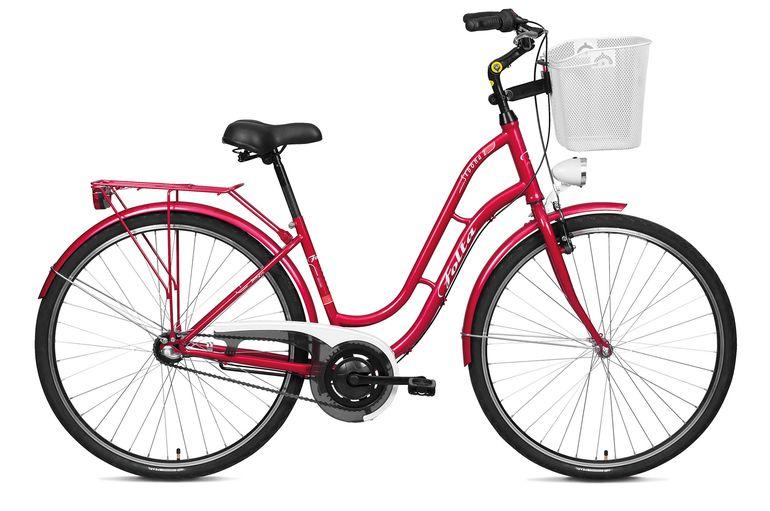 Jaki rower do 1000 złotych kupić?   Rowerowe Porady